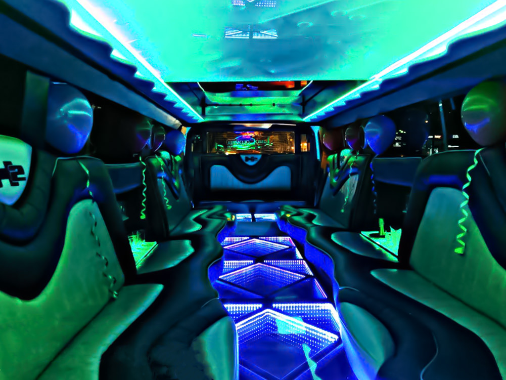 Limo Party Service