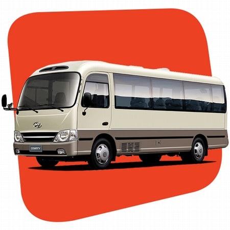 Cartagena Transportation 2 Hyundai County